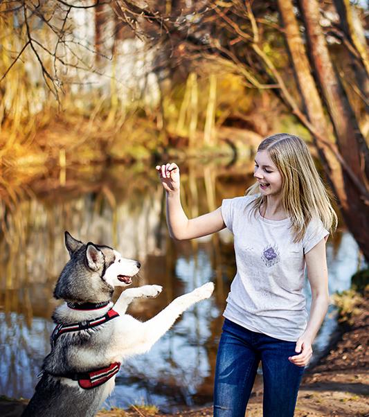 Das bin ich mit meiner Hündin Ellie. Wir machen gerade zusammen blödsinn und spielen.