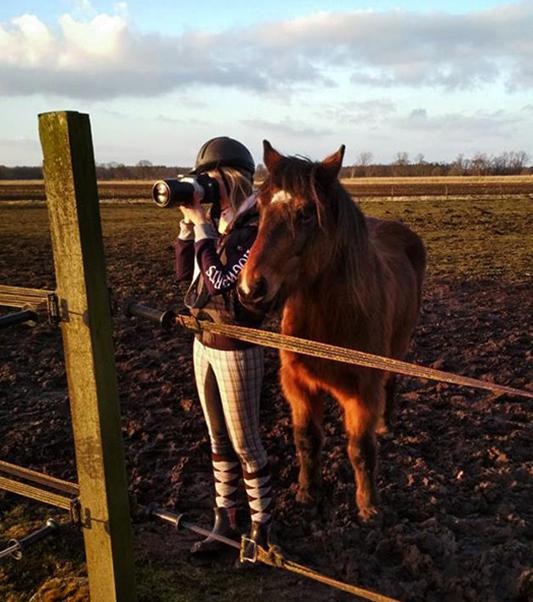 Ich fotografiere mit einem Reithelm auf dem Kopf und ein Pferd steht interessiert neben mir