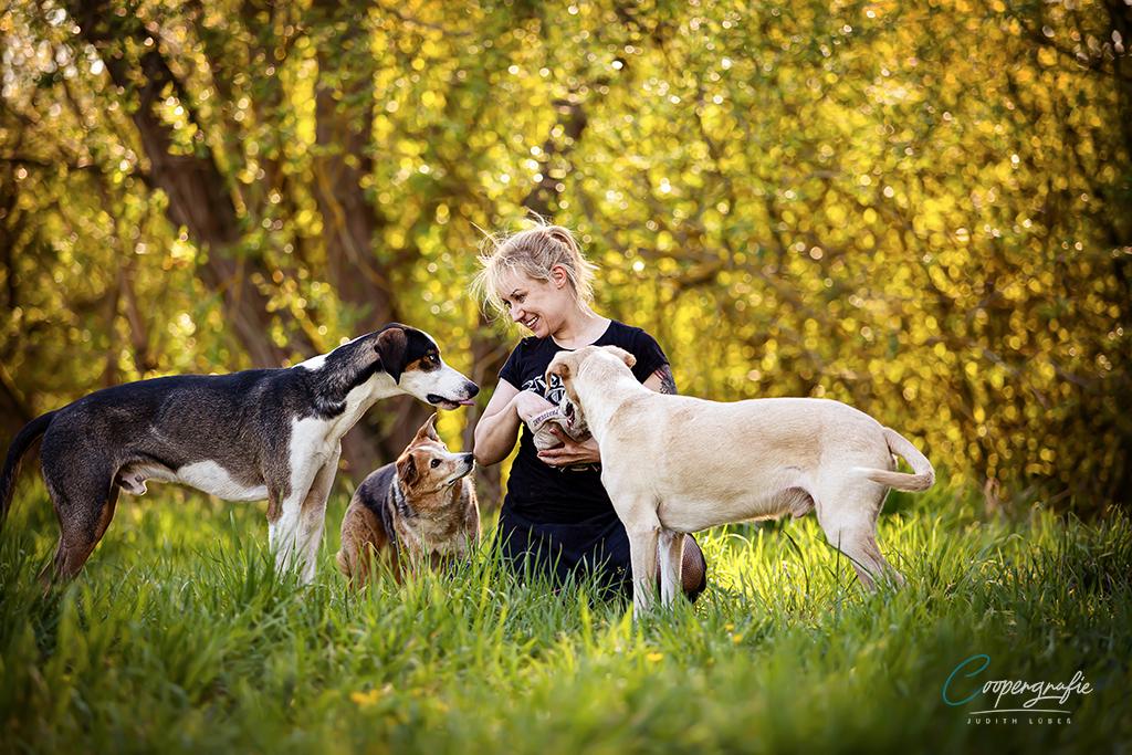 Eine junge blonde Frau sitzt auf dem Boden und ihre drei Hunde stehen um sie herum