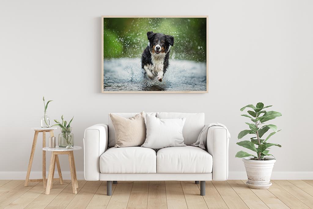 Dein Lieblingsfoto an der Wand auf einem wunderschönen Fotoprodukt