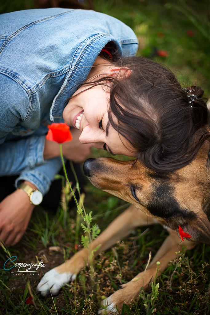 Hund und Mensch kuscheln bei einem Fotoshooting in der Blumenwiese