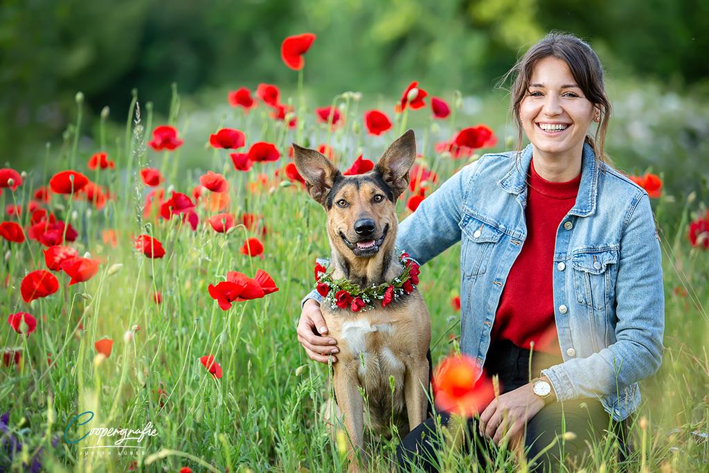 Hund und Mensch umgeben von Mohnblumen beim Fotoshooting in der Blumenwiese