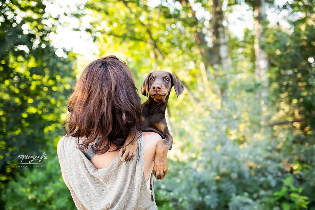 Hund und Mensch beim Welpenfotoshooting